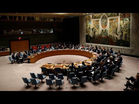 UNSC meets to discuss reports of chemical attack in Syria (Streamed live)