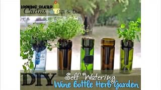 Self Watering Indoor Herb Garden  Hydroponic Garden  Bottle Planter  Gardening Gift  Wine Gifts  Wine Bottle Indoor Planter  Basil