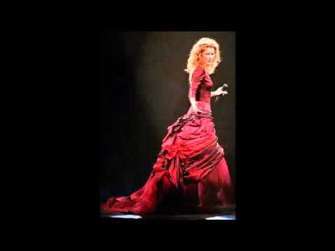 Celine Dion - The Reason (Live in Providence 1999)
