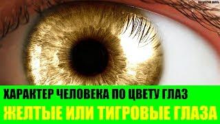 Характер человека с желтыми или тигровыми глазами