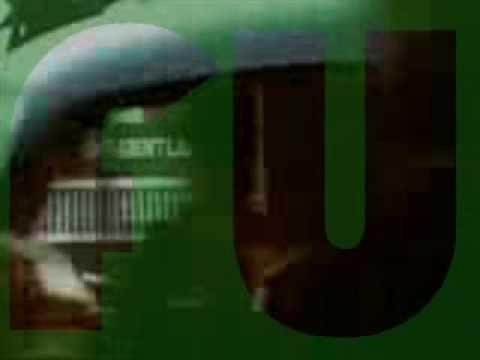 SYMARIP  SKINHEAD MOONSTOMP - TRACK 11 - FUNG SHU - vinyl