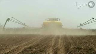 Bringing in the Harvest with the Soybean King