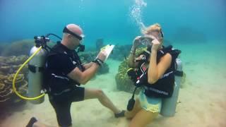 My underwater surprise proposal - best proposal ever!