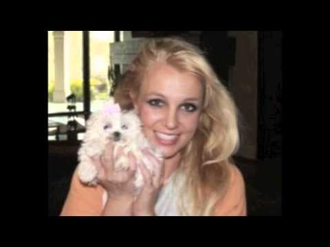 Britney Spears-The Femme Fatale Documentary (Official Trailer) from YouTube · Duration:  2 minutes 14 seconds