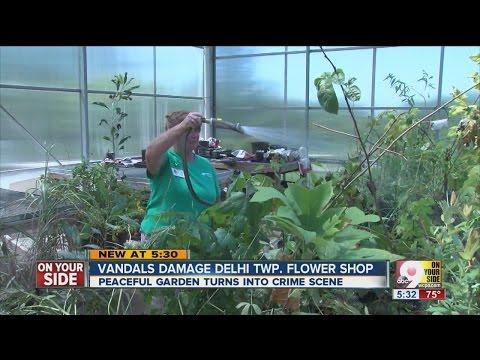 Floral Paradise Gardens: Vandals cause hundreds of dollars in damage at Delhi Township park