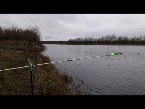 Рыбалка на налима на реке Паша | Ловля налима в ноябре