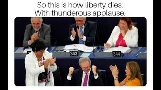 Article 13: What Happened?