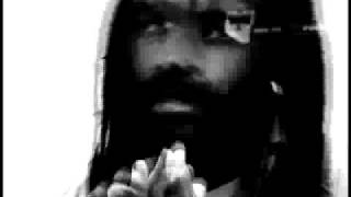 The Prison-Industrial Complex - Mumia Abu-Jamal