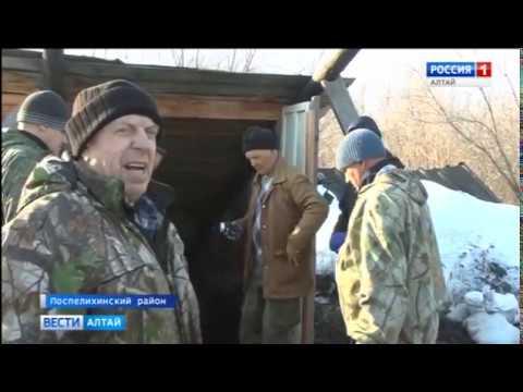 Пчеловоды Алтайского края начинают новый сезон