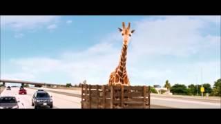 Мальчишник 3   отрывок с жирафом