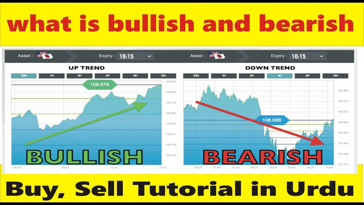 What is meant by bullish and bearish free script php hyip investment