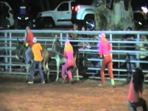 Tough Enough To Wear Pink Cowgirl S Donkey Race At Gunlock