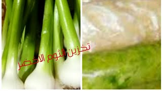 تخزين الثوم الأخضر من السنه للسنه بطريقه صحيه بدون اكسده وعمل الثوم البودر احلى من الجاهز بكتيير