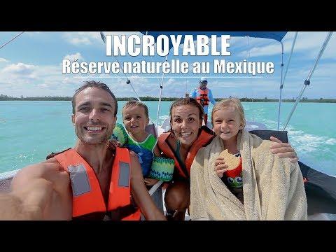72H de voyage au Mexique avec les enfants (et les dauphins) 🇲🇽👨👩👧👦🌴 [Vlog Family Coste]