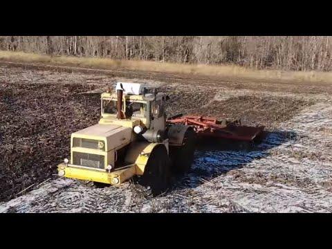Трактор Кировец. Дискование стерни подсолнечника. Несколько дней в одном видео.