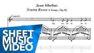 'Svarta Rosor' Sibelius 6 Songs Op.36 - Randi Stene