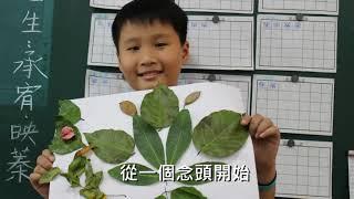 2019年愛種樹協會年度成果