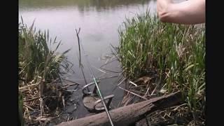 Рыбалка на озере в Красноярске разведка водоема).