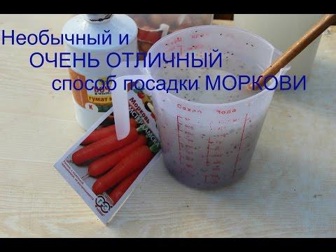 Приспособление для посева моркови своими руками Своими