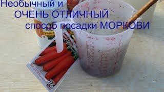 Хитрый способ для УРОЖАЙНОЙ МОРКОВИ.(По многочисленным просьбам показываю свой способ посадки моркови в действии. Попробуйте, и Вы будете с..., 2015-04-27T00:37:16.000Z)