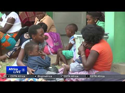 16 million households in Mozambique receive free mosquito nets