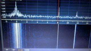 Receiving 8kHz signal with SDRplay RSP2 thumbnail