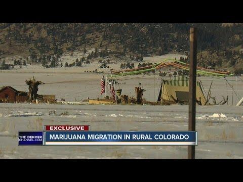 Marijuana migration in rural Colorado