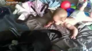 Кошки и маленькие дети - подборка видео!