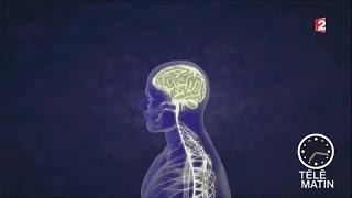 Santé - Tumeur au cerveau : un vaccin ? - 2016/02/25