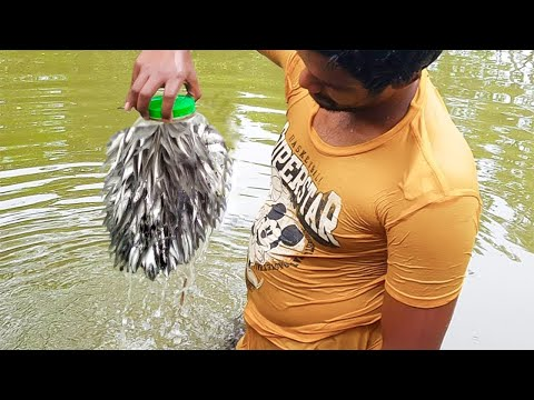 Bottle Fish Trap | Amazing Boy Catch Fish With Plastic Bottle Fish Trap (Part-2)