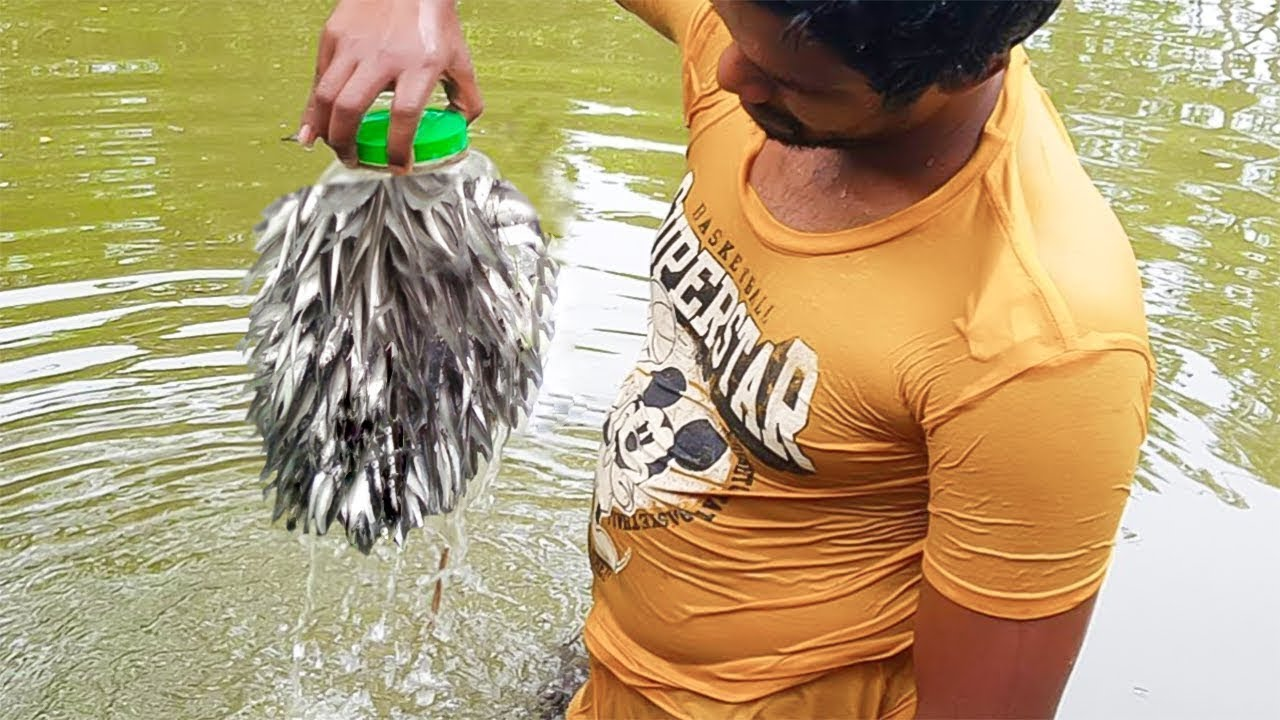 Bottle Fish Trap   Amazing Boy Catch Fish With Plastic Bottle Fish Trap (Part-2)