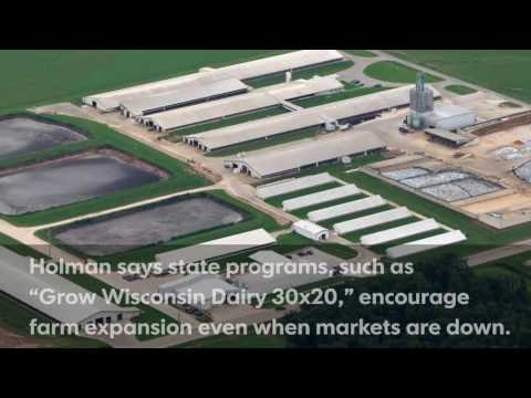Video: Wisconsin dairy farms