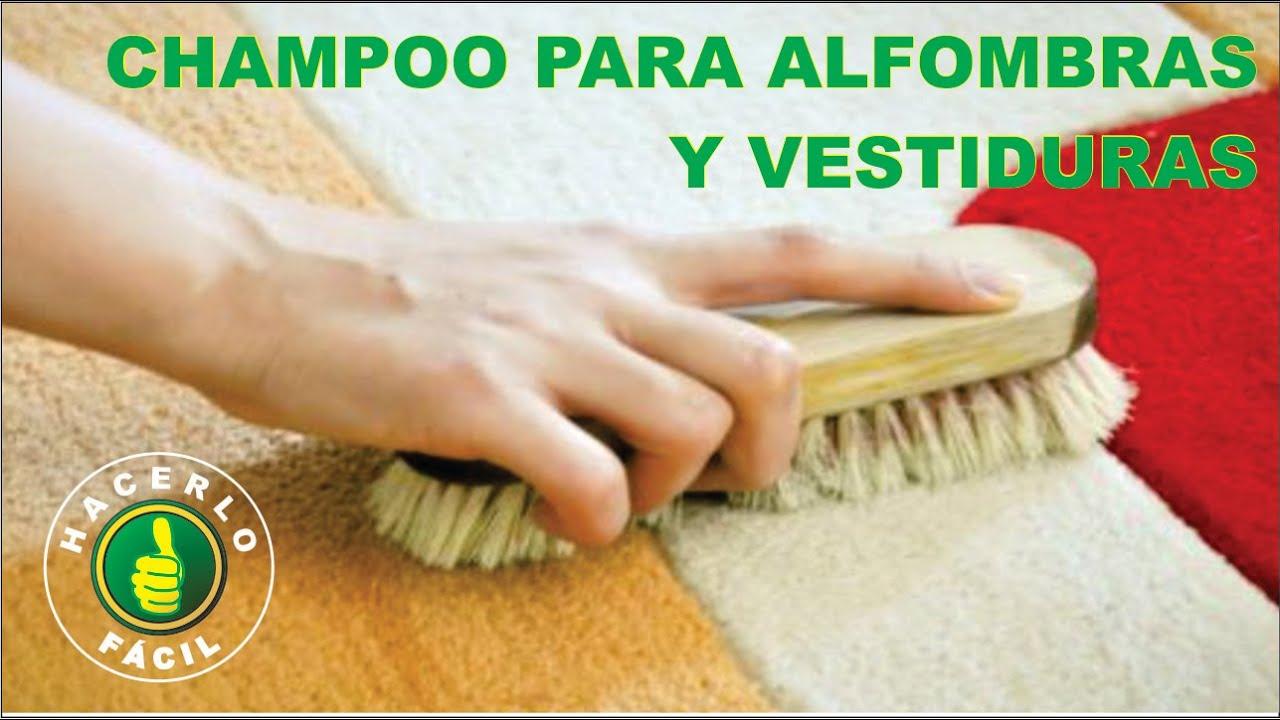 Limpieza casera de alfombras interesting cmo limpiar la - Productos para limpieza de alfombras ...