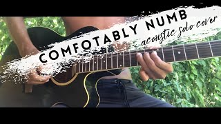Comfortably numb acoustic guitar solo ...