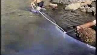 Longest Fish in the World caught on tape