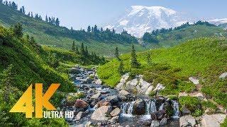 Mt. Rainier Pacifying Stream - 4K Relaxing Stream - 5 Hours Sounds of Water Stream for 4k oled tv