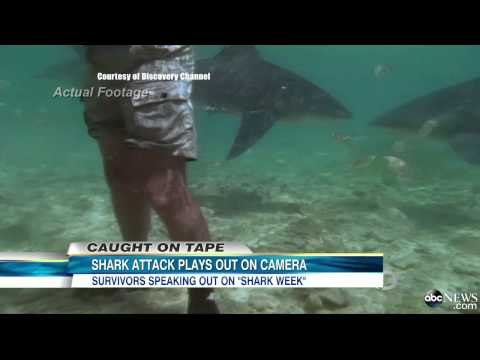 Shark Week 2013: Shark Attack Caught on Tape in 1994 Featured in 'I Escaped Jaws'