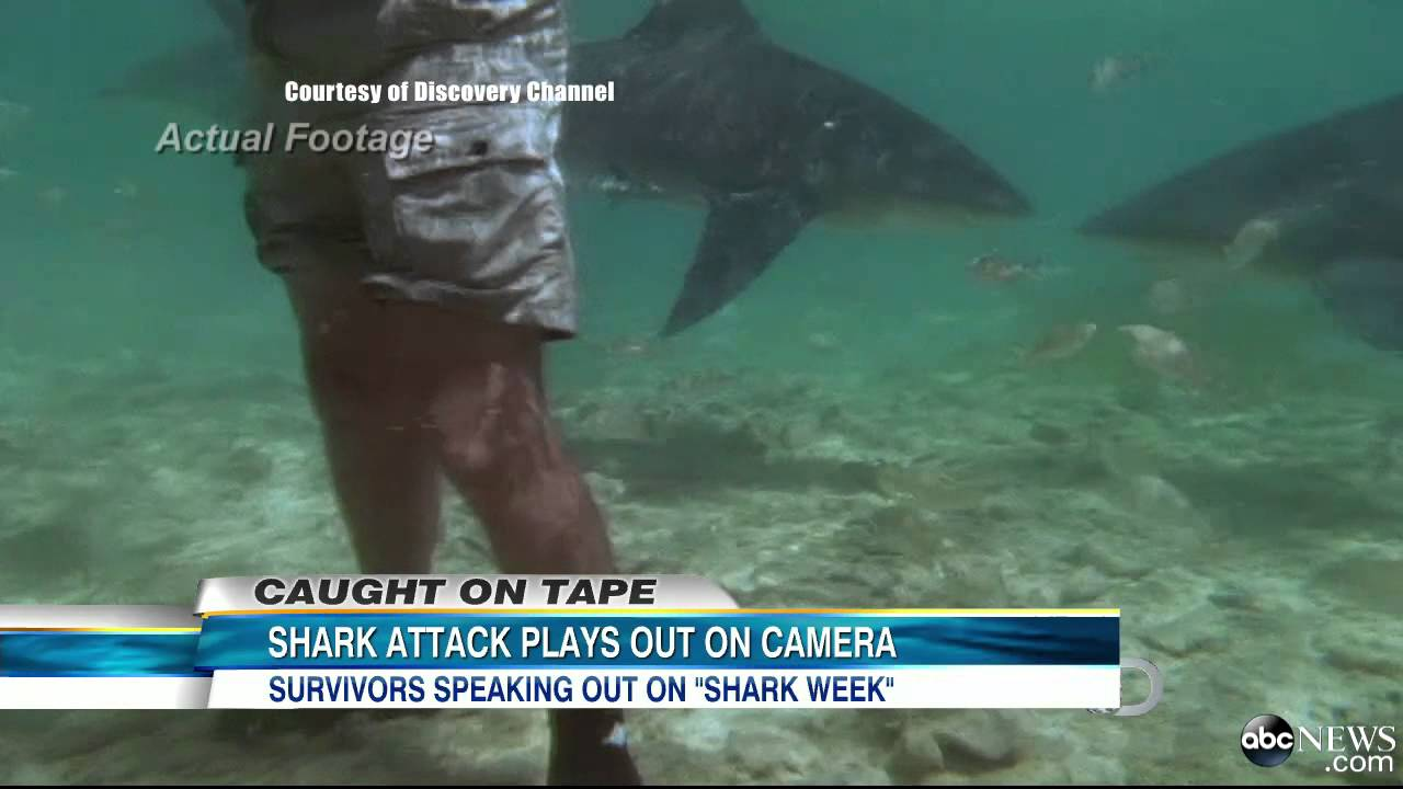 Shark Week 2013 Shark Attack Caught On Tape In 1994 Featured In I Escaped Jaws Youtube