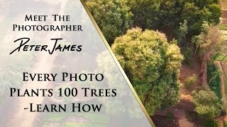 Every Photo Plants 100 Trees - Learn How