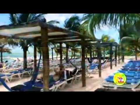 Jungle Beach Break You