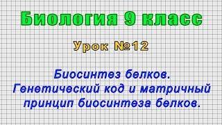 Биология 9 класс (Урок№12 - Биосинтез белков. Генетичес. код и матричный принцип биосинтеза белков.)
