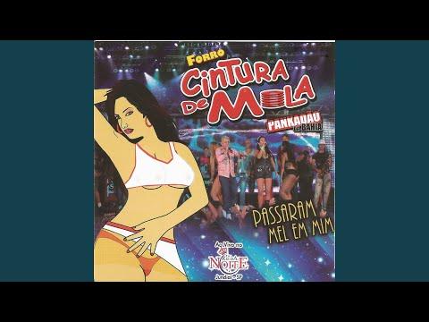 2012 CD FORRO GRATUITO SAIA ARRIBA DOWNLOAD