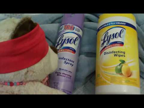 winnie's-dandy-disinfection