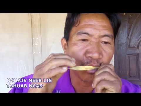 TSHUAB NCAS..ncas Pob Laum Tws Yog Ncas Kho Siab Tshaj Plaws