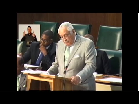"Sectoral Debate Presentation by Hon. Lester ""Mike"" Henry - June 8, 2016"