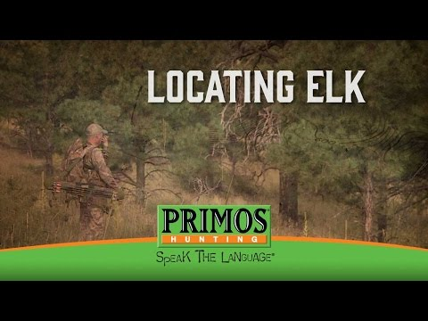 How to Locate Elk with Calls