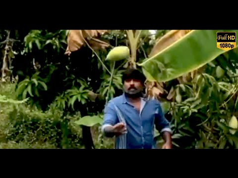 LOCK DOWN-னில் விஜய்சேதுபதி என்ன செய்கிறார் பாருங்கள்..! | Latest Tamil News | Vijay Sethupathi | HD