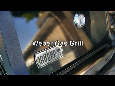 weber spirit e 210 gas grill propane bbq w 2 burner amp electric starter parts by top rated brand