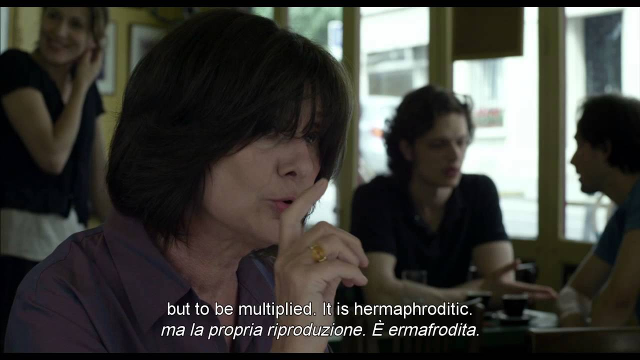 catherine breillat fat girl