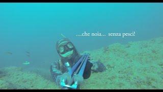 Il mare - 2014 - 18 ottobre - Sintesi di un uscita